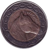 Лошадь. Монета 100 динаров. 2017 год, Алжир.
