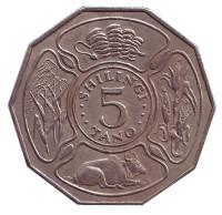 Монета 5 шиллингов. 1972 год, Танзания. Состояние - VF.