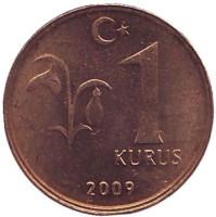 Монета 1 куруш. 2009 год, Турция. aUNC.