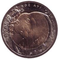 Медведь. Монета 1 лира, 2011 год, Турция.