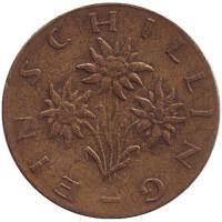 Эдельвейс. Монета 1 шиллинг. 1967 год, Австрия.