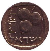 Гранат. Монета 5 агор. 1967 год, Израиль. UNC.