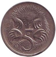 Ехидна. Монета 5 центов. 1978 год, Австралия.