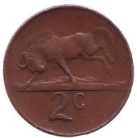Белохвостый гну. Монета 2 цента. 1966 год, Южная Африка. (Suid Afrika)