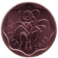 Сахарный тростник. Монета 10 центов. 2011 год, Свазиленд.