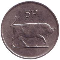 Бык. Ирландская арфа. Монета 5 пенсов. 1985 год, Ирландия.