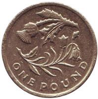 Флора Шотландии. Монета 1 фунт. 2014 год, Великобритания.