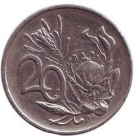 Цветок протея. Монета 20 центов. 1985 год, ЮАР.