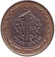1 лира. 2009 год, Турция.