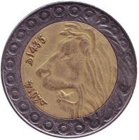 Лев. Монета 20 динаров. 2014 год, Алжир.