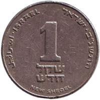 Монета 1 новый шекель. 1992 год, Израиль. (без подсвечника)