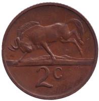Белохвостый гну. Монета 2 цента. 1971 год, Южная Африка.
