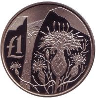Чертополох. Монета 1 фунт. 2006 год, Кипр.