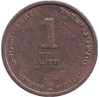 Монета 1 новый шекель. 1993 год, Израиль. (с подсвечником)