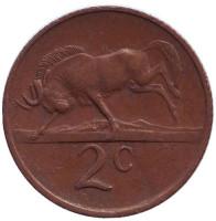 Белохвостый гну. Монета 2 цента. 1974 год, Южная Африка.