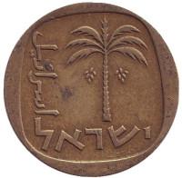 Пальма. Монета 10 агор. 1963 год, Израиль. Из обращения.