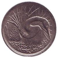 Большая белая цапля. Монета 5 центов. 1983 год, Сингапур.