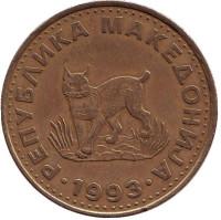 Европейская рысь. Монета 5 денаров, 1993 год, Македония.