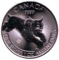 Рысь. Монета 5 долларов. 2017 год, Канада.