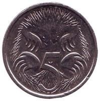 Ехидна. Монета 5 центов. 2017 год, Австралия.