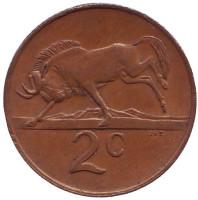 Белохвостый гну. Монета 2 цента. 1987 год, Южная Африка.