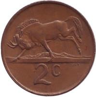 Белохвостый гну. Монета 2 цента. 1990 год, Южная Африка.