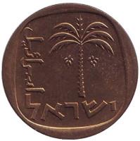 Пальма. Монета 10 агор. 1963 год, Израиль. UNC.