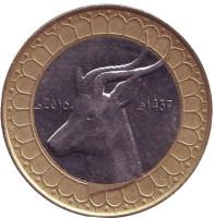 Газель. Монета 50 динаров. 2016 год, Алжир.