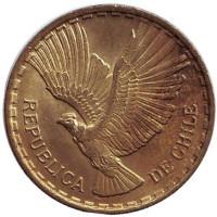 Кондор. Монета 2 чентезимо. 1969 год, Чили.
