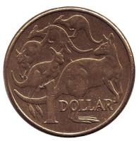 Кенгуру. Монета 1 доллар. 2013 год, Австралия.