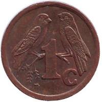 Южноафриканские (Капские) воробьи. Монета 1 цент. 1995 год, Южная Африка.