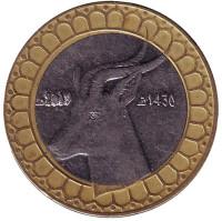 Газель. Монета 50 динаров. 2009 год, Алжир.