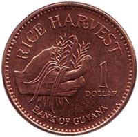 Урожай риса. Монета 1 доллар, 2005 год, Гайана.