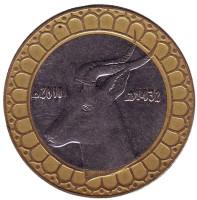 Газель. Монета 50 динаров. 2011 год, Алжир.