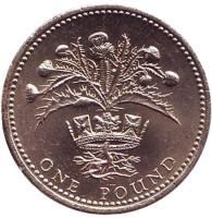 Чертополох. Монета 1 фунт. 1984 год, Великобритания. (XF).