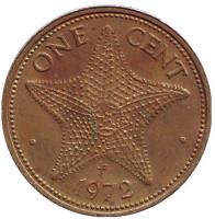 Морская звезда. Монета 1 цент. 1972 год, Багамские острова.