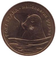 Длинномордый тюлень. Монета 2 злотых, 2007 год, Польша.