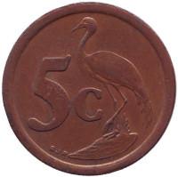 Африканская красавка. Монета 5 центов. 1995 год, Южная Африка.