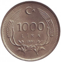 Монета 1000 лир. 1991 год, Турция.