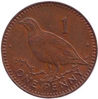 Берберская куропатка. Монета 1 пенни, 1992 год, Гибралтар. (AA)