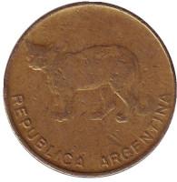 Пампасская кошка. Монета 5 сентаво. 1985 год, Аргентина.