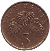 Монстера деликатесная. Монета 5 центов. 2000 год, Сингапур.