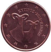 Монета 5 центов. 2015 год, Кипр.