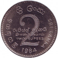 Монета 2 рупии. 1984 год, Шри-Ланка. aUNC.
