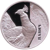 Павлин. (Фауна в памятниках культуры Украины). Монета 5 гривен. 2016 год, Украина.