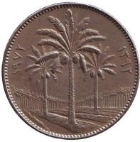 Пальмовые деревья. Монета 25 филсов, 1972 год, Ирак.