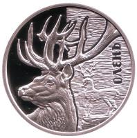 Олень. (Фауна в памятниках культуры Украины). Монета 5 гривен. 2016 год, Украина.