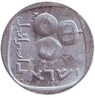 Гранат. Монета 5 агор. 1977 год, Израиль.