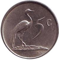 Африканская красавка. Монета 5 центов. 1978 год, Южная Африка.