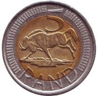 Антилопа гну. Монета 5 рандов. 2011 год, ЮАР.